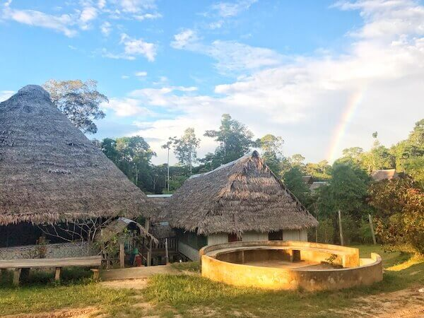 amazon shaman training